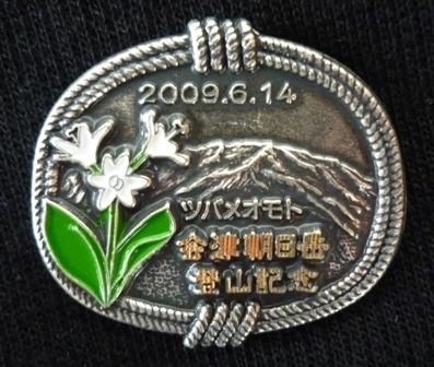 Badge_aiduasahi