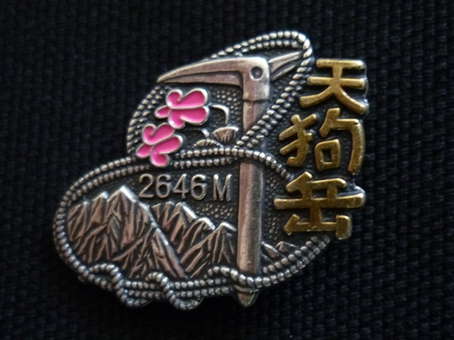 Badge_tenguss