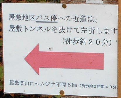 Saburu_torikabuto_214ss
