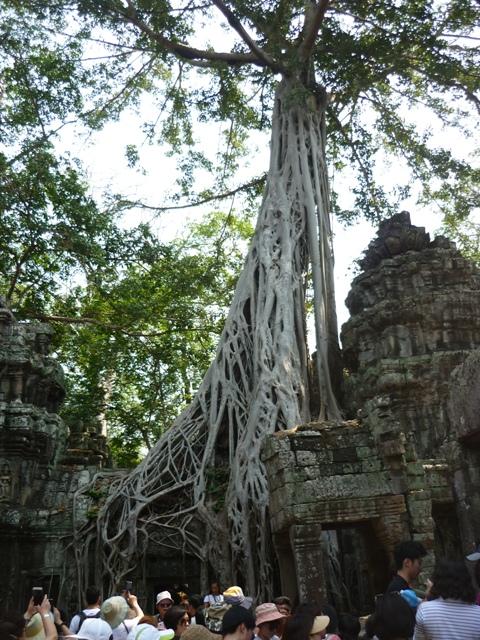 Cambodia_chi_073ss