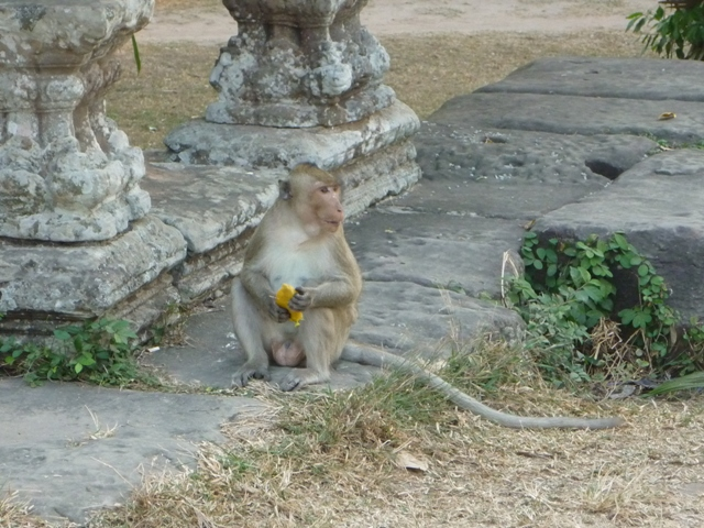 Cambodia_chi_097ss