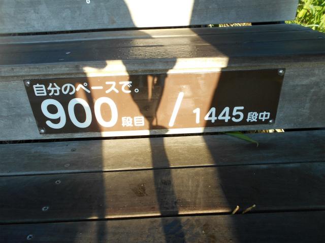 Dscn8975ss