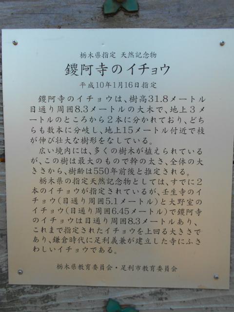 Gyoudousan_109_ss